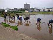 farming_a_01.jpg