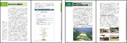 「よく分かる農業」は現代GPの一環として刊行されたA5判112頁の書籍です。網走寒冷地農場が制作の中心を担いました。寒冷地における農業を春夏秋冬に分け、豊富な図版と写真を使い解説。初学者にも農業経営の流れがよく分かる内容となっています。