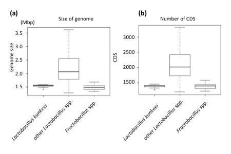 ゲノムサイズと遺伝子数の比較