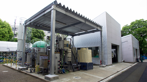 Biomass Energy Center