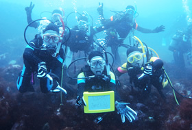 diving_a_01.jpg