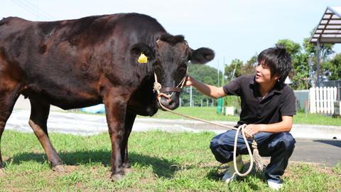 畜産学科 | 東京農業大学