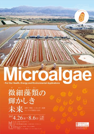 微細藻類の輝かしき未来 ―健康・環境・エネルギー資源としての可能性に迫る―