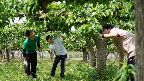 Agroad『農産物栽培・販売プロジェクト』