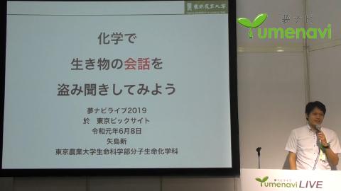 分子生命化学科 矢島 新 教授