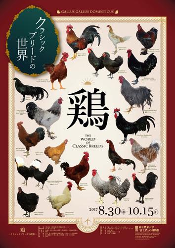 鶏 ―クラシックブリードの世界―