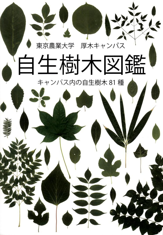 自生樹木図鑑 宮本太ほか