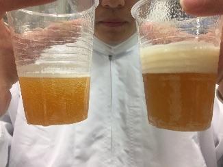 学生が畑から作った「学生ビール」が好評発売中