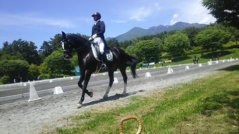equestrian_02.jpg